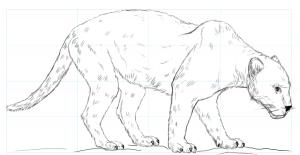 como dibujar la pantera rosa