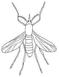 dibujos del zika