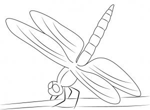 imagenes de libelulas para dibujar