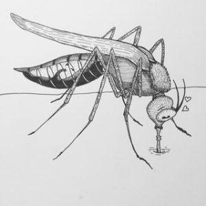 mosquito del dengue sintomas
