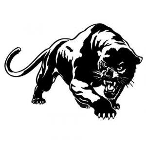 pantera negra dibujo