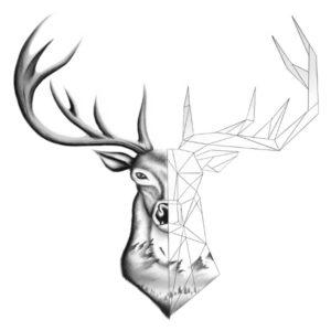 dibujos ciervos para imprimir