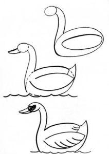 dibujos cisnes para imprimir