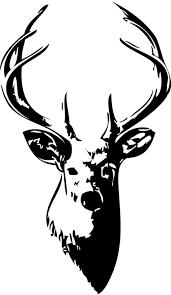 dibujos de ciervos para colorear