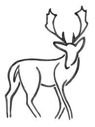 dibujos de ciervos para imprimir