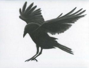 diseños de cuervos