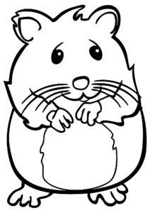 fotos de hamsters rusos