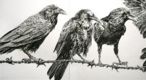 imagenes cuervos animados