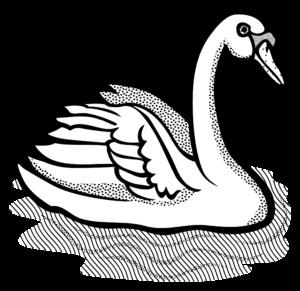 imagenes de cisnes para bodas