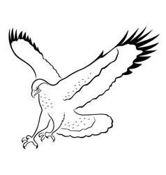 imagenes de halcones animados