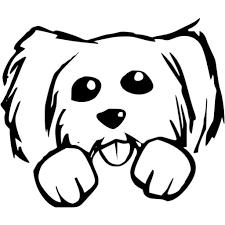 imagenes de perros cachorros