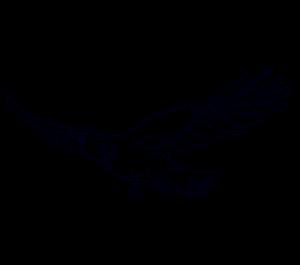 logos de halcones