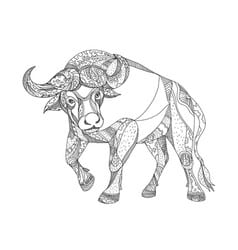 logotipos de bufalos