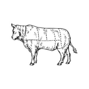 carne para pintar