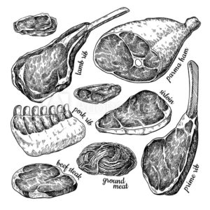 trozo de carne dibujo