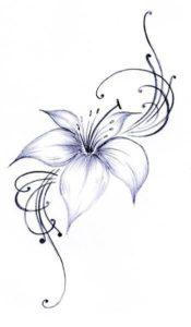 azucenas flores fotos