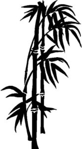 bambu para dibujar