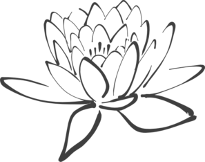 cuadro flor de loto