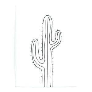cuadros de cactus