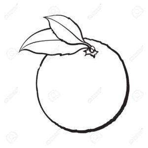 dibujos de naranjas para imprimir
