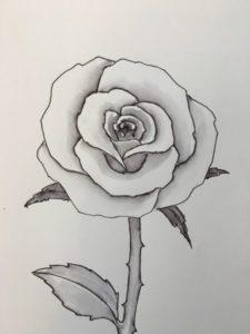 dibujos de rosas faciles