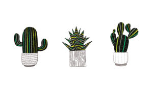 fotos de cactus y sus nombres