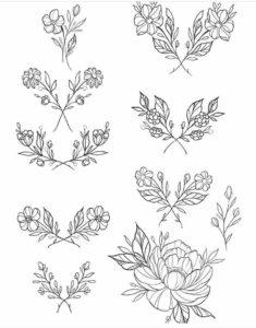 fotos de plantas y sus nombres