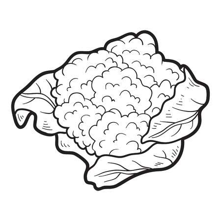 imagenes de coliflor
