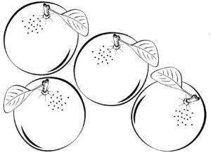 imagenes de frutas naranja