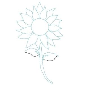 imagenes de girasoles para dibujar