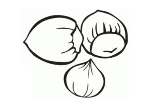 imagenes de nueces para colorear