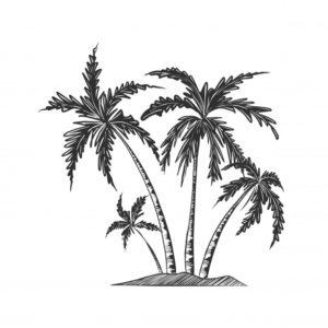 palmeras animadas