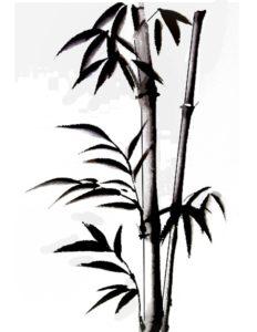 pintar cañas bambu