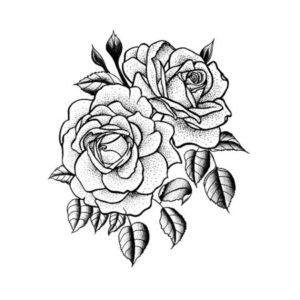 rosas dibujos a lapiz