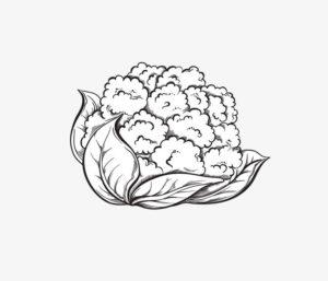 tipos de coliflor